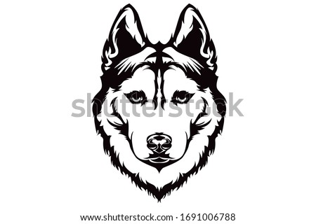 siberian husky vector line art