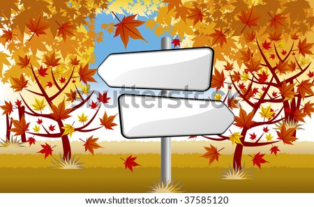 signpost in autumn maple forest