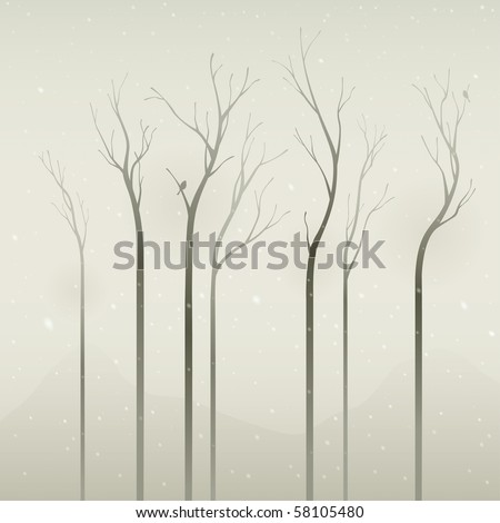 silent winter  dried trees in