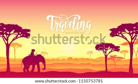 silhouette african elephants