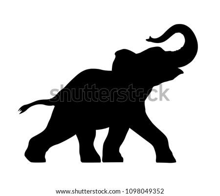 silhouette baby elephant