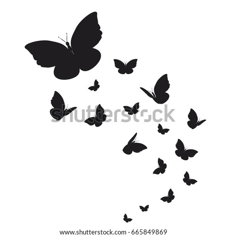 stock-vector-silhouette-beautiful-butterflies-isolated-on-a-white