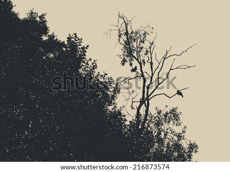 silhouette dry tree with two