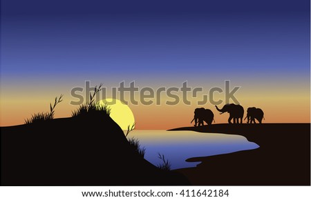 silhouette family elephants at