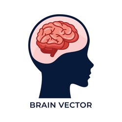 Silhouette head with brain vector detailed flat illustration isolated on white background