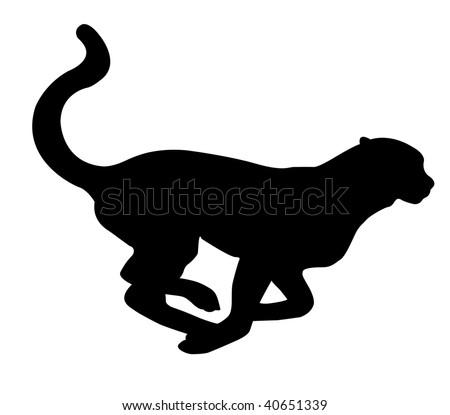 silhouette leopard