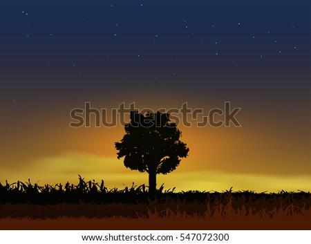 silhouette of a big lonely tree