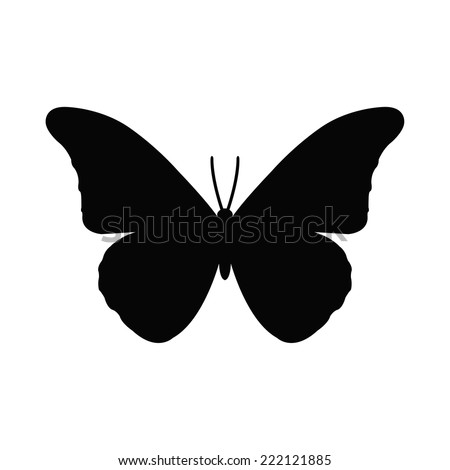 stock-vector-silhouette-of-a-butterfly