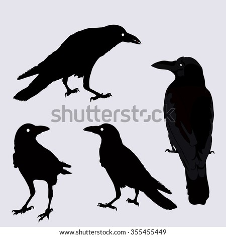 silhouette of a crows in