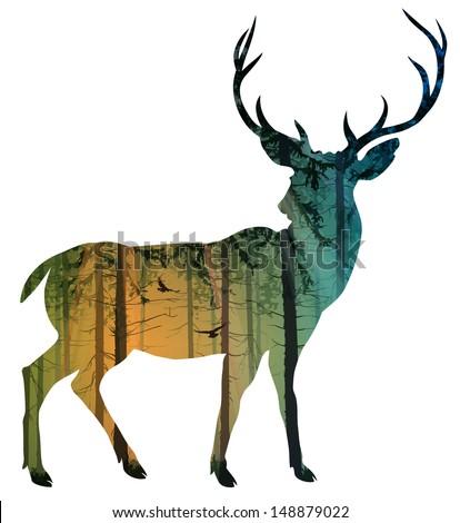 silhouette of a deer inside