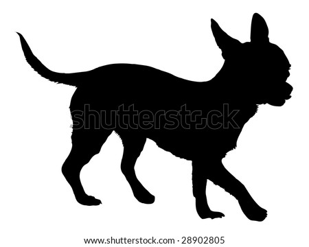 Silhouette of a dog of breed chihuahua