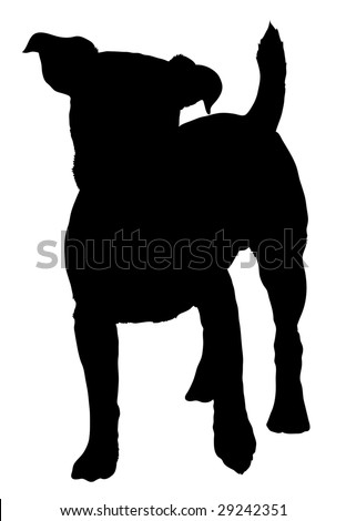 Silhouette of a dog of breed Jack Russel Terrier