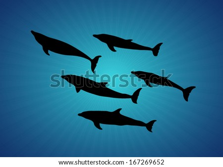 silhouette of a dolphin in