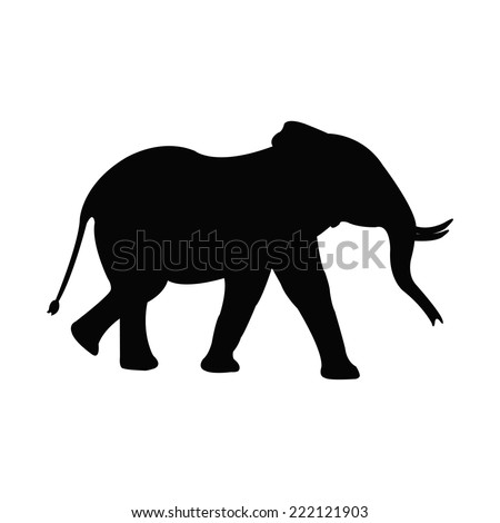 Silhouette of a elephant