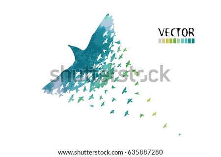 silhouette of a flock of flying