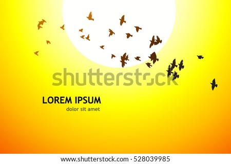 silhouette of a flying flock of