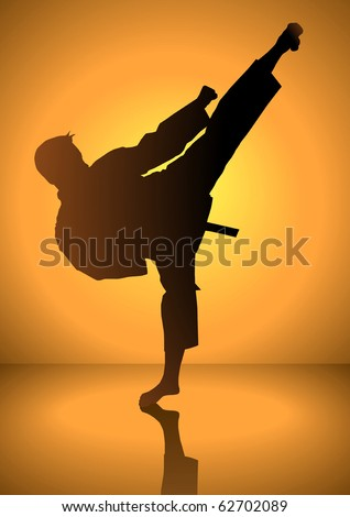 silhouette of a karateka doing