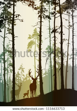 silhouette of a pine forest with a family of deer, vector illustration