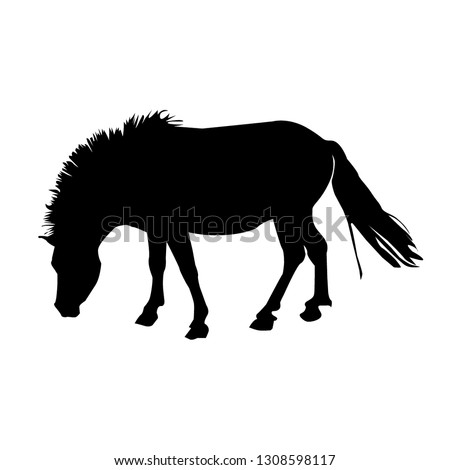 silhouette of a pony close up