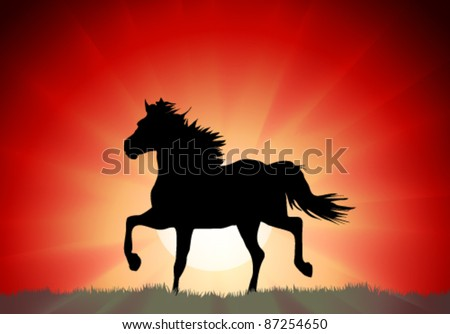 Silhouette of a running horse on a sunset