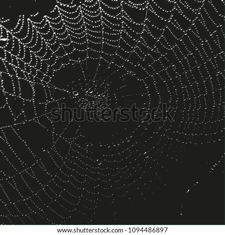 silhouette of a web with drops