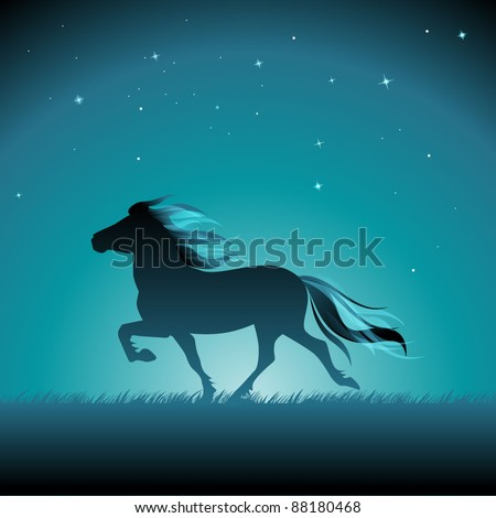 silhouette of an icelandic pony