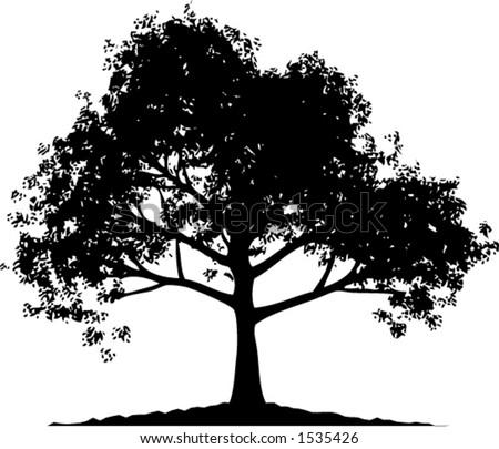 oak tree silhouette vectors - download free vector art, stock