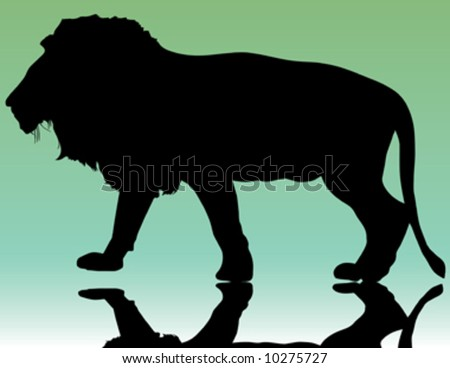 silhouette of beautiful lion on