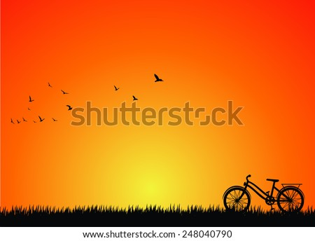 silhouette of bicycle on nature