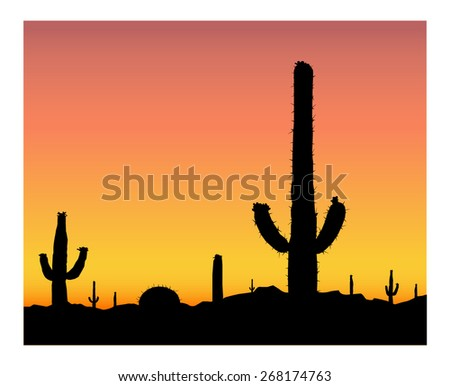 silhouette of blooming cactuses