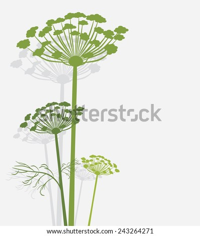 stock-vector-silhouette-of-blooming-fenn