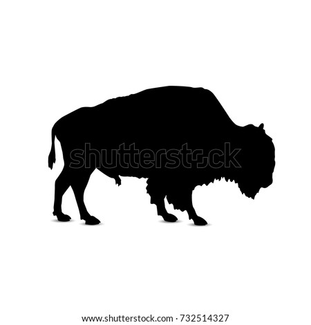 Silhouette of buffalo.