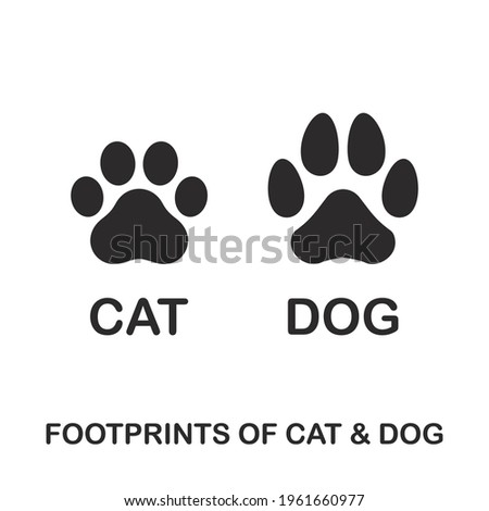 silhouette of cat and dog paw