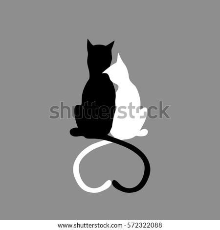 silhouette of cat couple in