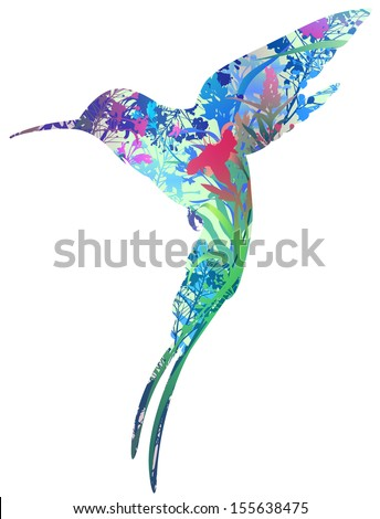 silhouette of colibri in