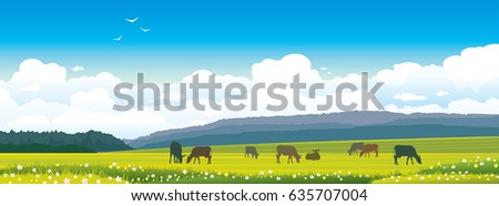 silhouette of cows on a green