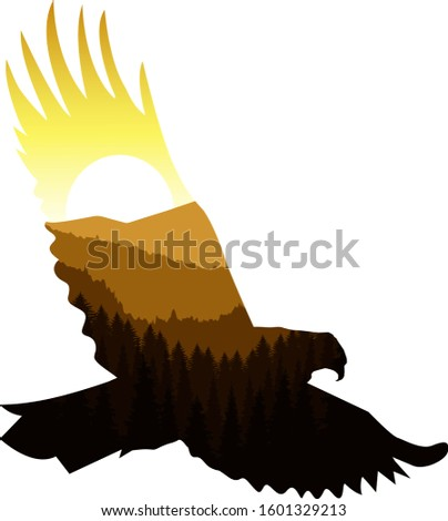 silhouette of eagle with