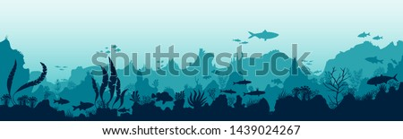Silhouette of fish and algae on the background of reefs