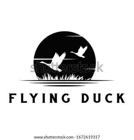 silhouette of flying duck with