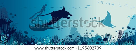 silhouette of freediver and
