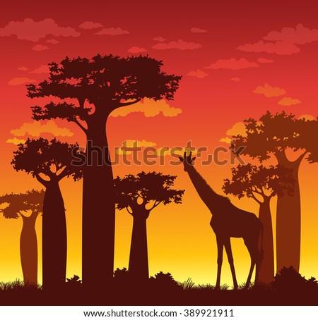 silhouette of giraffe and