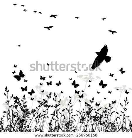 silhouette of grass and flying