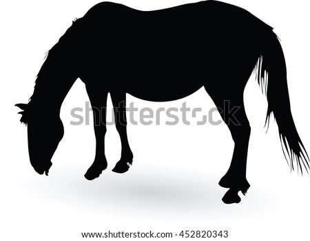 silhouette of large horse