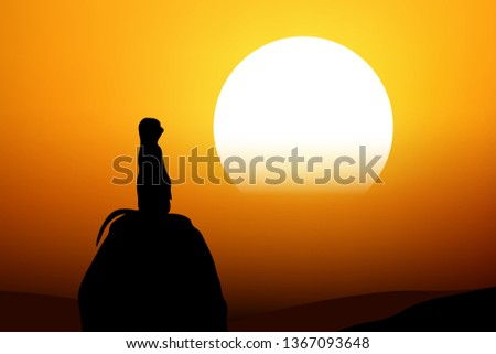 silhouette of lonely meerkat
