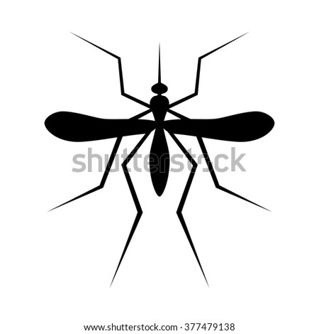 silhouette of mosquito insect