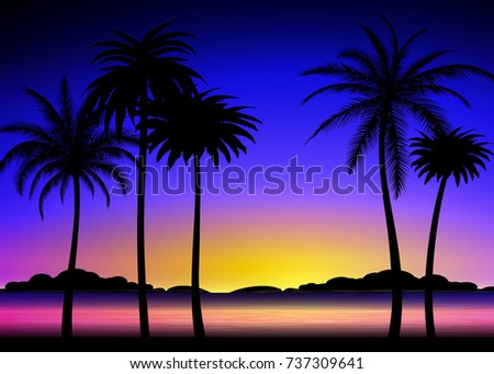 silhouette of palm trees on the