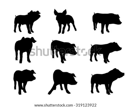 silhouette of piglet