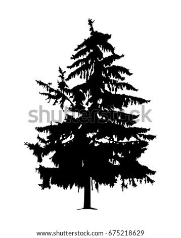 silhouette of pine radioactive
