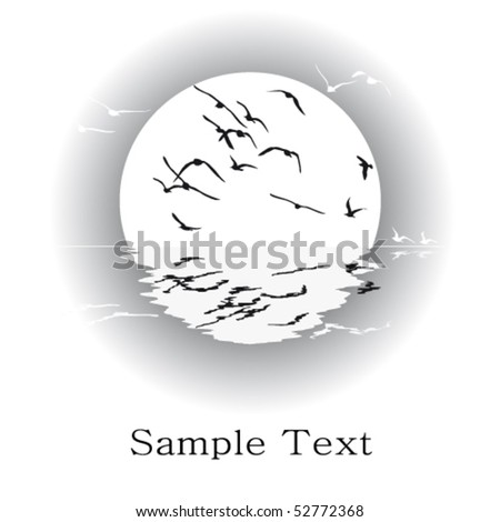 silhouette of seagulls  vector