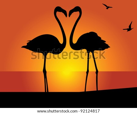 silhouette of the flamingo on a